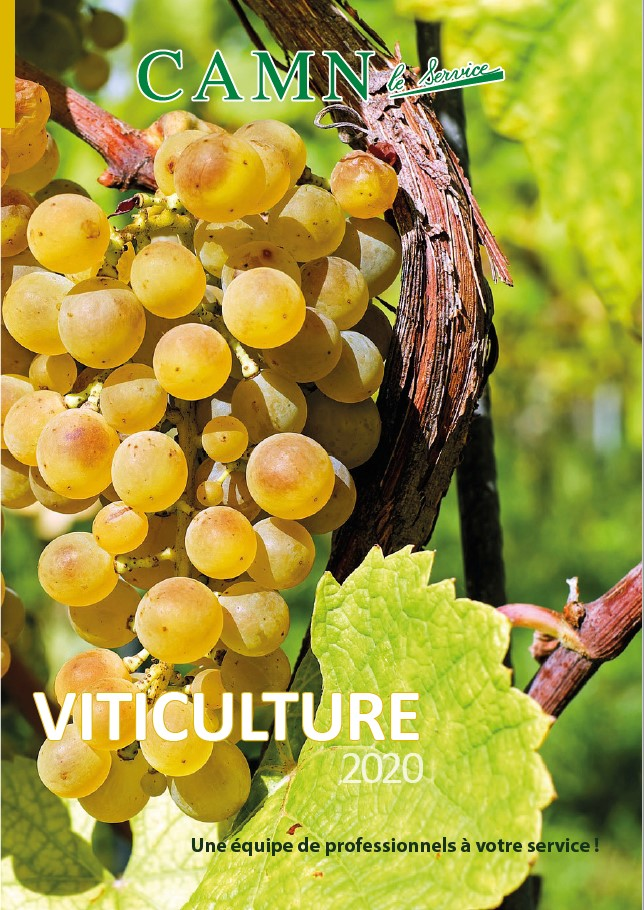 vignette catalogue vigne 2020